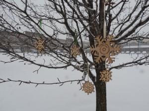 Williston, Vermont - Winter of 2012-2013